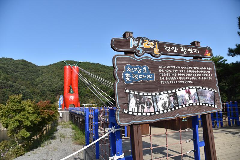 画像] ディープな韓国を地方でた...