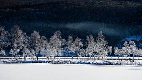 若林直樹のトラベルフォトギャラリー 冬の白樺湖とビーナスライン