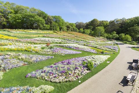里山 2020 横浜 ガーデン